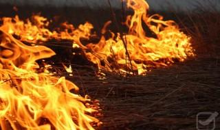 За добу рятувальники Черкащини приборкали п'ять пожеж сухої трави