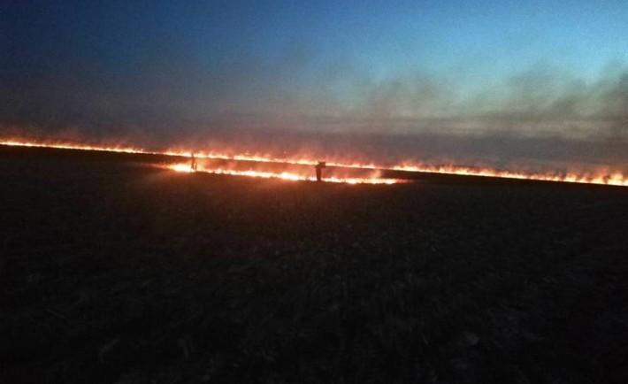 На Черкащині горіло кукурудзяне поле